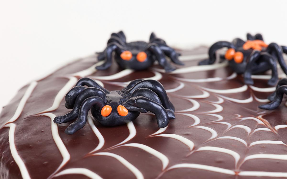 Bizcocho de chocolate tela de araña